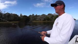 Basic jig fishing retrieve  | Jacksonville Fishing Trips