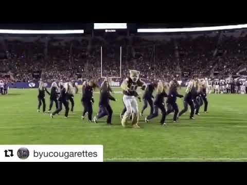 BYU Mascot does dances in the middle of the game!!!!