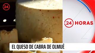 Chile Conectado - El queso de cabra de Olmué