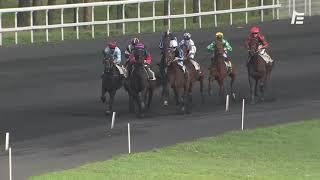 Vidéo de la course PMU PRIX DE GRENADE