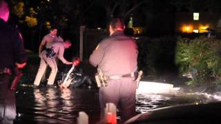 Bloodied Suspect Arrested After Wild Police Chase & Crash In Modesto, California - Modesto News