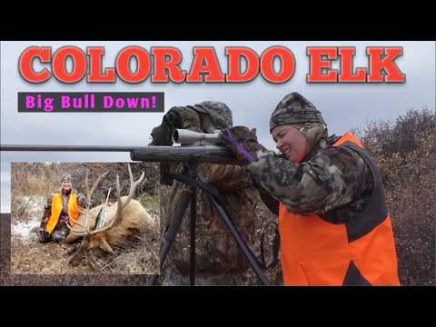 Big Bull Elk In Colorado - 2nd Rifle Season.