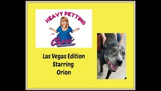 Heavy Petting with Cheri Hardman Episode 28 Vegas Edition with Orion