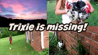 Trixie is missing!