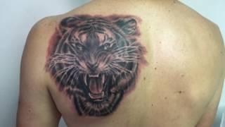 Azumi ink // Tiger tattoo
