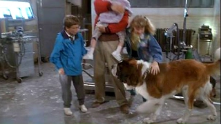 beethoven (1992)-  beethoven rescued! HD