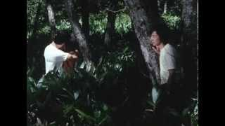 [TRAILER] Heart (Kokoro) (1973)
