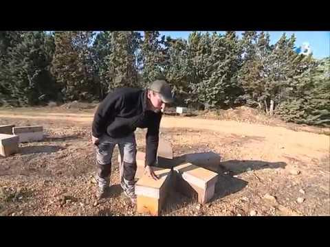 un-apiculteur-du-boulou-dans-les-pyrénées-orientales-se-fait-voler-57-ruches