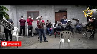 Banda de Viento Estrella El Toro Huasteco y Vida