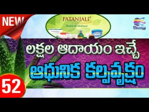 Most Profitable Best Farming business idea for new business entrepreneur in Telugu -52
