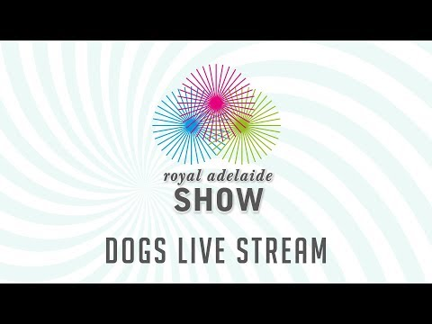 The OPERATION DOG Royal Adelaide Show Live Steam