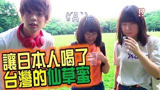 讓日本人喝了台灣的仙草蜜,沒想到意見豐富…