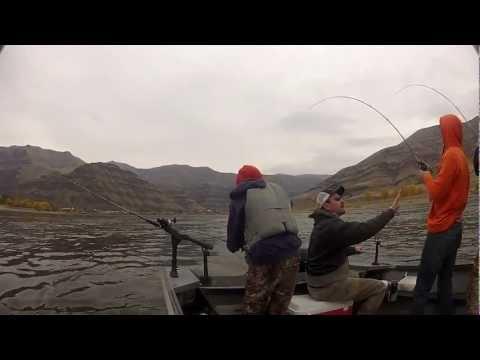 Snake River Steelheading With Rick Hedding