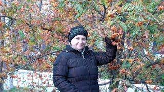 У природы нет плохой погоды//Исполняет Татьяна Смирнова// Красотка - осень в нашем крае.