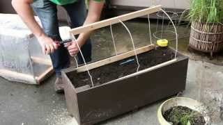 Patio Gardening - Home Made Planter Box Greenhouse - Vancouver