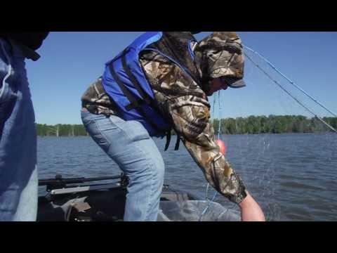 Catfish Bait Gill Net Action