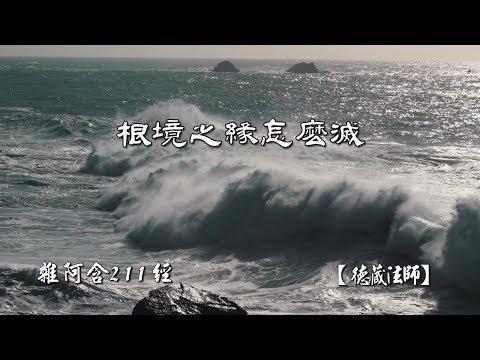 雜阿含211經-03.根境之緣怎麼滅【德藏法師】