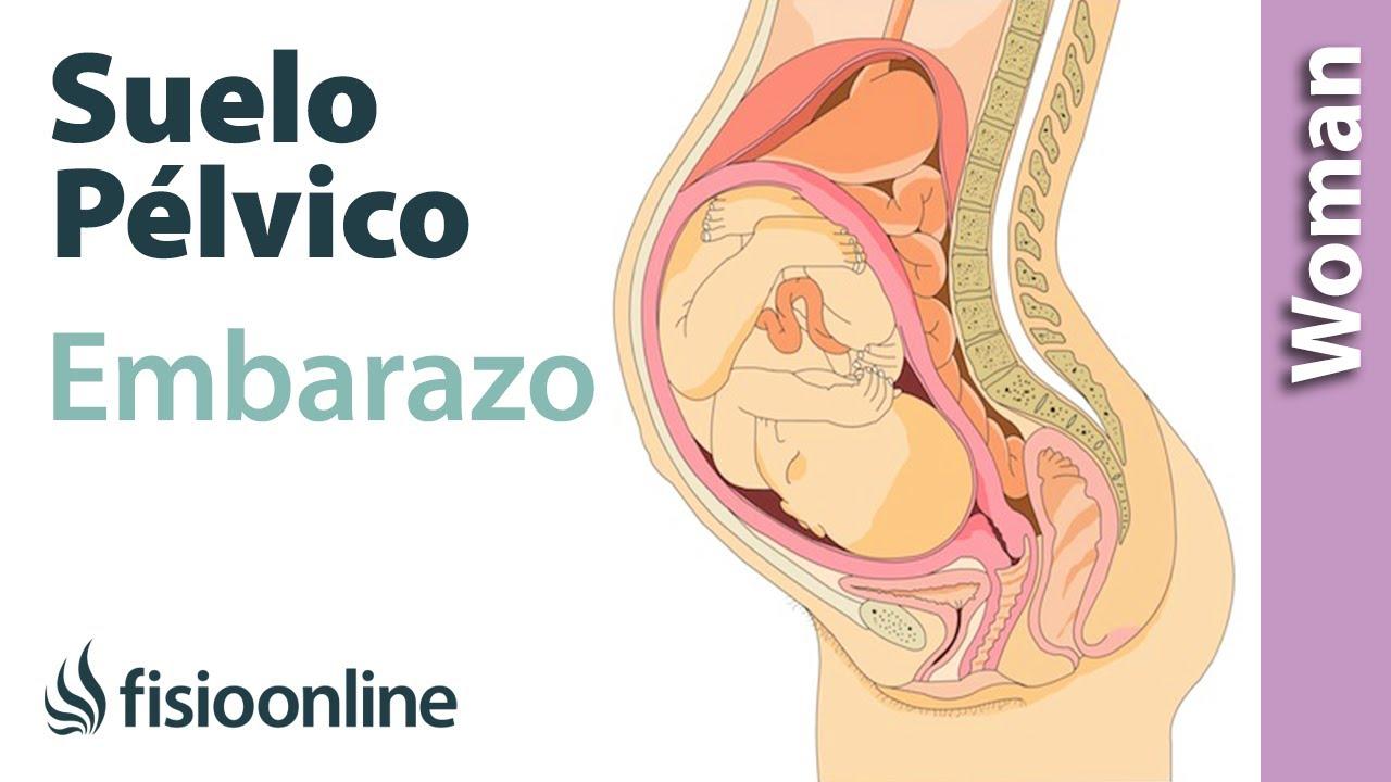 Área pélvica de dolor en el embarazo de 7 semanas.