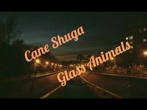 Cane Shuga-Glass Animals (Lyrics)