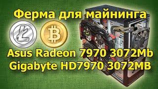 Ферма для майнинга Bitcoin сайт: www.24bitcoin.biz