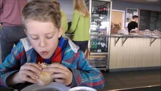 Cornwall Kid: Carnon Downs Garden Centre Pet Shop Visit March 2017