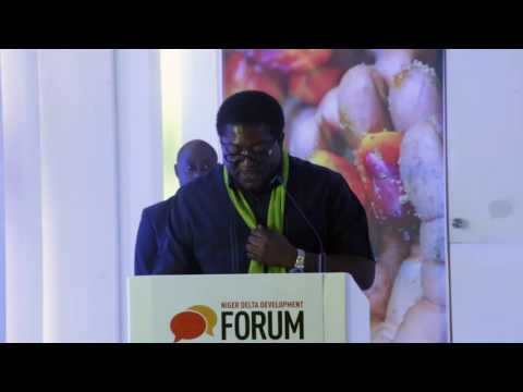 Opening Address by the Deputy Governor Imo State on behalf of the Executive Governor at the NDDF 201