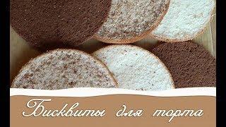 Бисквит для торта Как приготовить разные бисквиты быстро