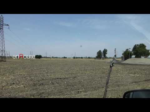 Farmland-Punjab