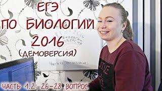 ЕГЭ 2016 по биологии. Разбор вопросов 26-28.