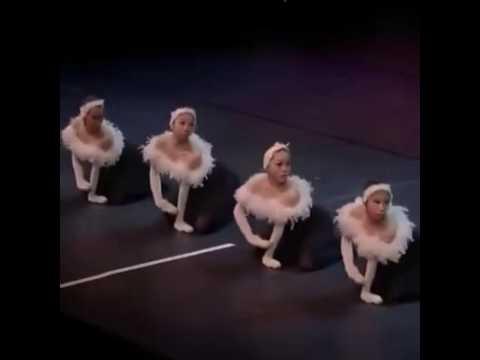 手で白鳥の湖を踊ってみた【バレエ】