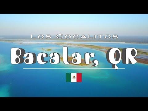 Cocalitos in Bacalar, Quintana Roo