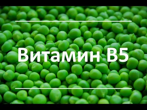 Витамин В5 - Функции и польза для здоровья, признаки дефицита, продукты, богатые витамином В5