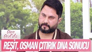 Reşit ile Osman Çıtırık'ın DNA sonucu - Esra Erol'da 1 Ocak 2018