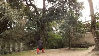 鷺森神社  ( 武道 : Martial Arts 2019.04.18 @ 15:49 )