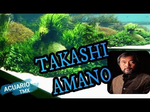 Increíble🏯 Acuario y todo gracias a una persona, Takashi Amano🐚ACUARIO TmX🐠💧