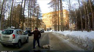 В Ухте на ул. Горького отравили собак 31 марта 2018г.