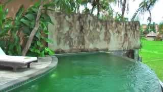 Motama villa for rent in Ubud (Bali) with private pool and view on the rice fields