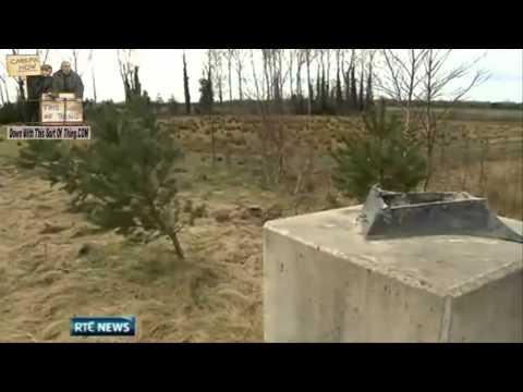 Bronze Statue Stolen From Kildare Roadside RTE News