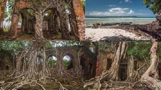 ভূতুড়ে দ্বীপে এক রাত থাকলেই মৃত্যু অনিবার্য! || Ghost Island