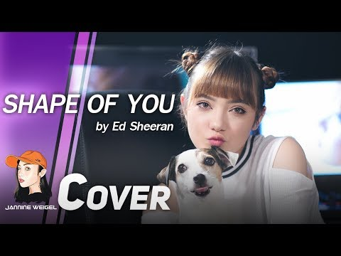Ed Sheeran - Shape of You cover by Jannine Weigel ft.Tyler & Ryan