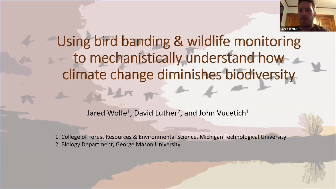 Keynote talk blog: climate change disrupts biological interactions resulting in biodiversity loss