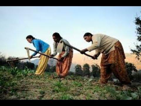 Crop Planning for Late Monsoon Season-karnataka farmers latest