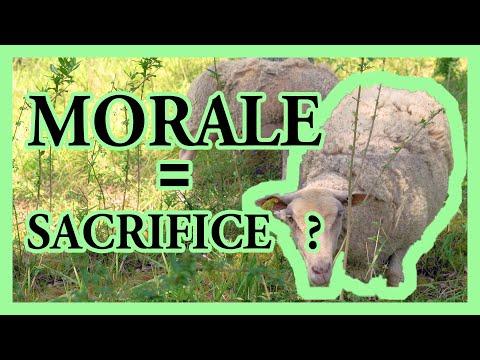 """À-quoi-""""sert""""-la-morale-(pour-un-biologiste)-?---morale-#4"""