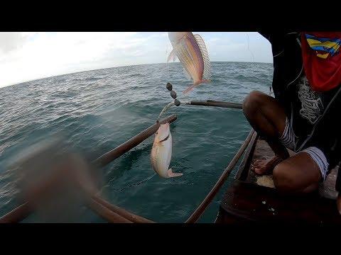 Bisugo Fishing In Philippines..