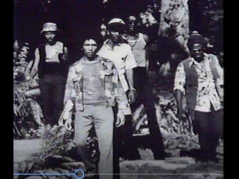 Bob Marley and the Wailers (Documentary)