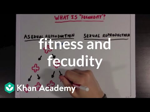 Fitness and fecundity | Biomolecules | MCAT | Khan Academy