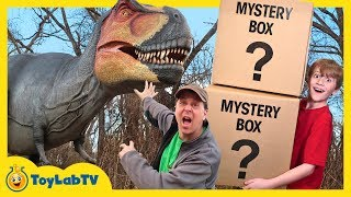 Dinosaur Mystery Box Challenge! Giant Life Size Dinosaurs for Kids & Playground Adventure with Toys thumbnail