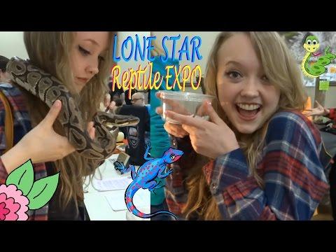 ★ Lone Star Reptile Expo - March 2016 ★