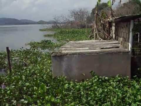 isla La culebra carabobo lago de valencia uam