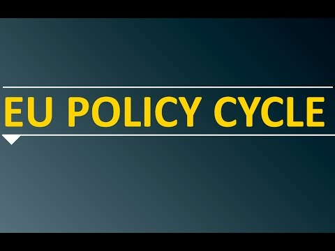 What is the EU policy cycle?